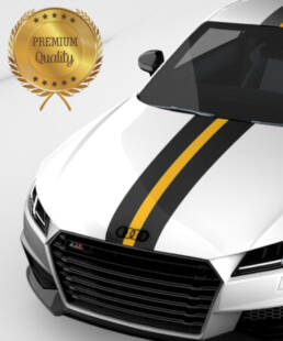 Forza1 median strip is perfect for Audi TT tuning
